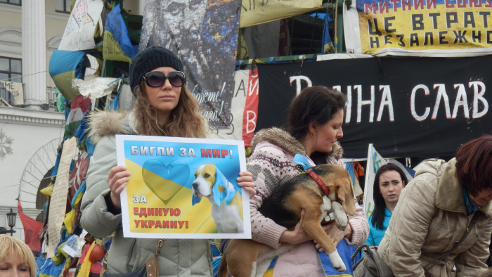 Beagles for Peace: PuppyProtest