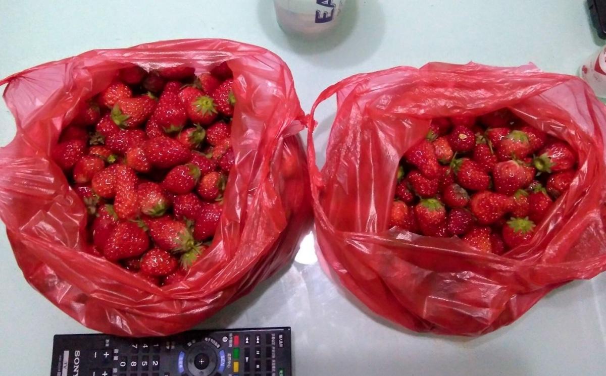 Strawberry Shopping inChina