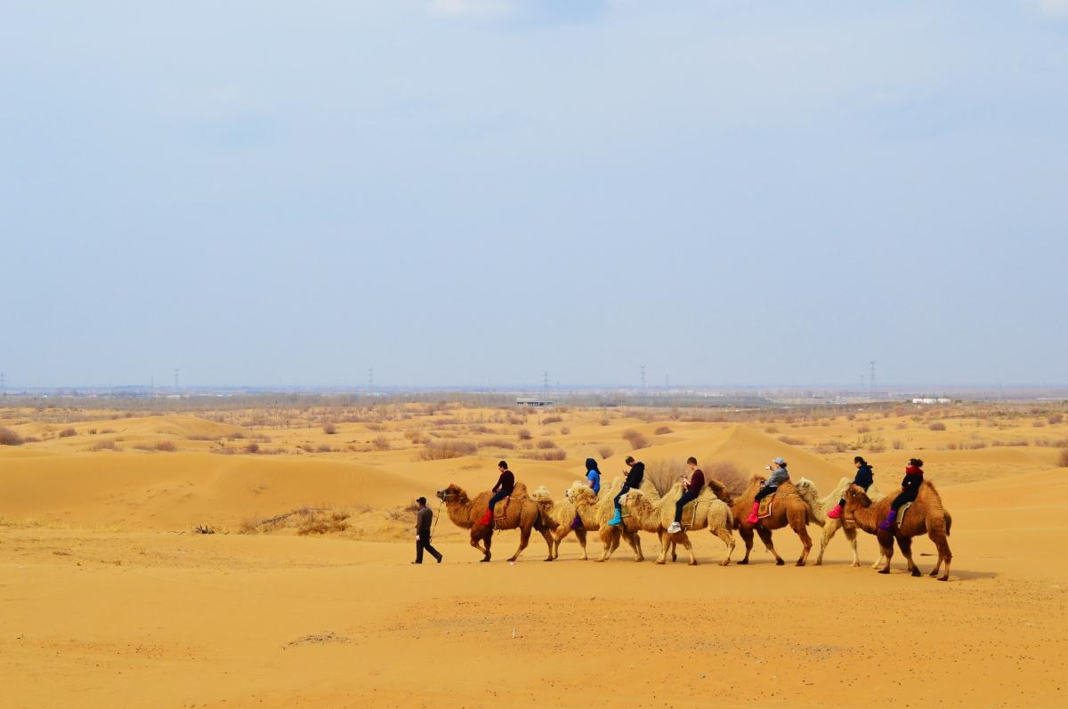 Kubuqi Desert Adventures, Inner Mongolia(Photos)