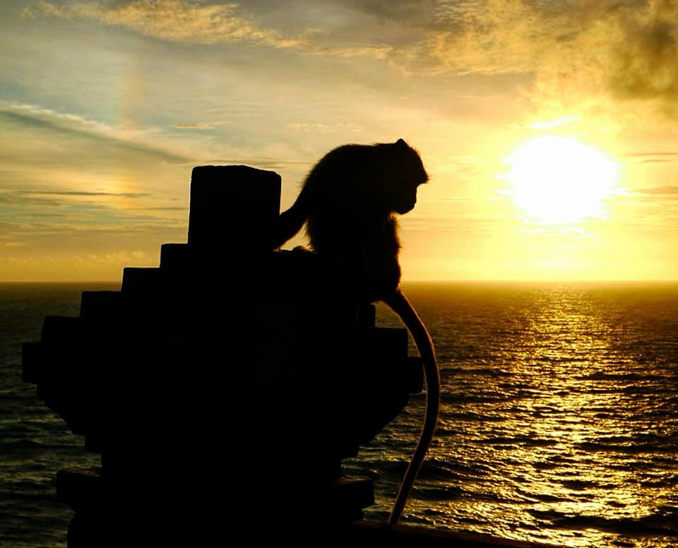 Bali: Uluwatu Sunset & Evil GeniusMonkeys