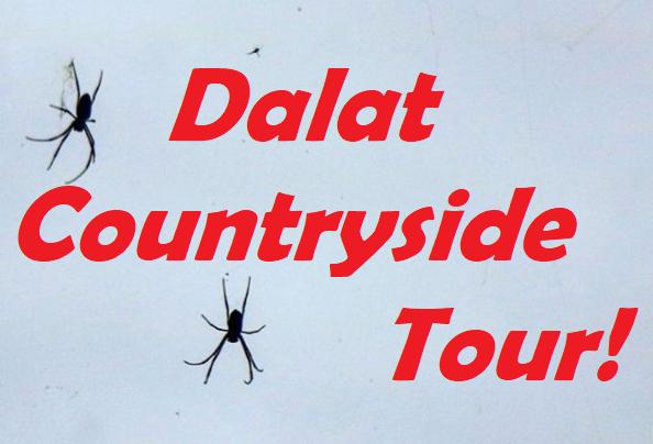 Da Lat Countryside Tour: Rose Garden & MinorityVillage
