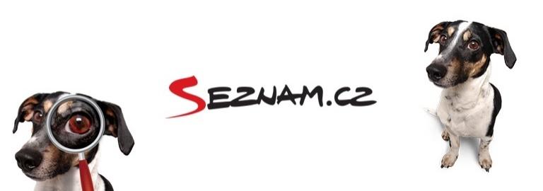 SEZNAM.CZ, THE CZECH SYNONYM FORINTERNET