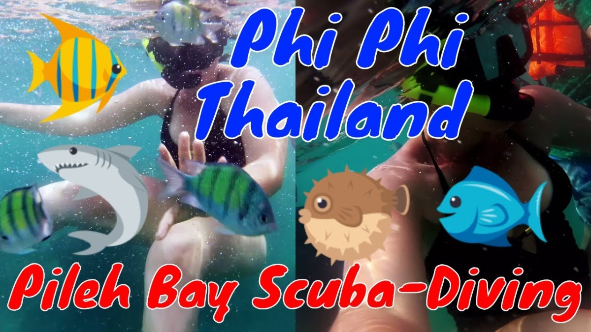 Scuba-Diving at Pileh Bay: Phi Phi, Thailand 2018